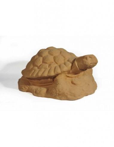 Tartaruga - H70cm